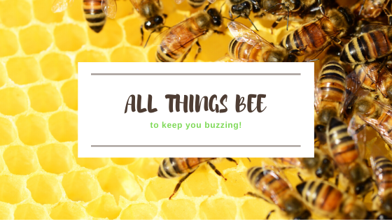 All Things Bee